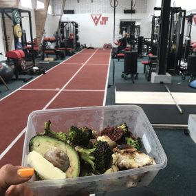 4 Things I Learned about Nutrition during My Internship at Wolf Gate